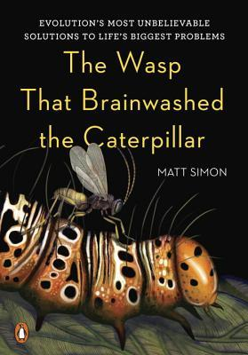 the-wasp-that-brainwashed-the-caterpillars